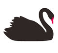 Single Elegance Black Swan Flat Icon, Vector Royalty Free Stock Photos - 91795218