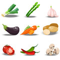 Set With Fresh Healty Vegetables Stock Image - 91800571