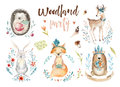 Cute Baby Fox, Deer Animal Nursery Rabbit And Bear Isolated Illustration For Children. Watercolor Boho Forestdrawing Stock Image - 91801251