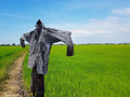 Silhouette Of A Scarecrow On A Field Royalty Free Stock Images - 91803779