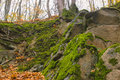 Gray Stone With Green Moss Texture Background Royalty Free Stock Images - 91853659
