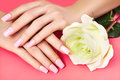 Manicured Nails With Pink Nail Polish. Manicure With Nailpolish. Fashion Art Manicure, Shiny Gel Lacquer. Nails Salon Stock Photography - 91950042