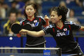 Table Tennis Stock Photography - 9201482