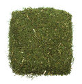 Spice Of Thyme Isolated Royalty Free Stock Photo - 9209535