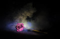A Wilting Rose Signifies Lost Love, Divorce, Or A Bad Relationship, Dead Rose On Dark Background Stock Photos - 92073853