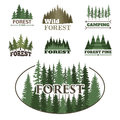 Tree Outdoor Travel Green Silhouette Forest Badge Coniferous Natural Logo Badge Tops Pine Spruce Vector. Stock Photography - 92082542