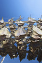 Fish Hanging Outside To Dry Stock Image - 9215541
