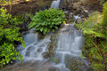 Waterfall At Crystal Springs Rhododendron Garden Royalty Free Stock Image - 92157116
