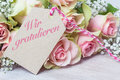 `We Congratulate`, Pink Roses Stock Images - 92168234