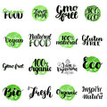 Eco, Bio, Organic, Gluten Free, Natural Food, Vegan Lettering. Modern Hand Drawn Ecological Icons And Badges Against Royalty Free Stock Image - 92172606