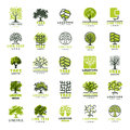 Tree Outdoor Travel Green Silhouette Forest Badge Coniferous Natural Logo Badge Collection Line Spruce Vector. Stock Photos - 92204613