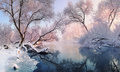 Mostly Calm Winter River, Surrounded By Trees Covered With Hoarfrost And Snow That Falls On A Beautiful Pink Morning Lighti Royalty Free Stock Photography - 92221577