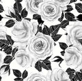 Wite Roses Watercolor Seamless Pattern Stock Photo - 92230780