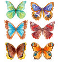Watercolor Butterflies Set Royalty Free Stock Image - 92238576