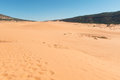Coral Pink Sand Dunes Stock Image - 92308111
