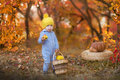 Little Cute Baby Boy In Yellow Winter Hat Sitting On Pumpkin In Autumn Forest Alone Royalty Free Stock Photography - 92361767
