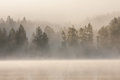 Foggy Forest And Lake At Dawn Royalty Free Stock Photos - 92372018