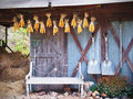 Old Chair, Gardening Tools In Front Of Barn Stock Images - 92432234