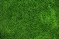 Green Grass Texture Stock Photos - 92477863