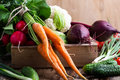 Harvest Still Life. Food Composition Of Fresh Organic Vegetables Royalty Free Stock Photo - 92547485