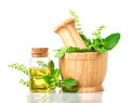 Basil In Wooden Mortar With Essential Oil , Alternative Herbal Royalty Free Stock Images - 92566579