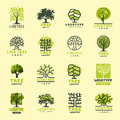 Tree Outdoor Travel Green Silhouette Forest Badge Coniferous Natural Badge Tops Line Spruce Vector. Stock Image - 92678671