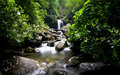 Waterfall And Cascades In Green Forest Stock Photos - 92766053