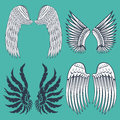 Wings Isolated Animal Feather Pinion Bird Freedom Flight Natural Peace Design Vector Illustration. Royalty Free Stock Photography - 92766877