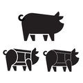 Pork Cuts On Pig Stock Photography - 92774952