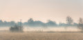 Winter Morning In The Countryside Royalty Free Stock Photos - 92791168
