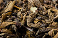 Green Tea, Dried Tea Leaves. Stock Image - 92825201