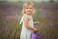 Pretty Cute Little Girl Is Wearing White Dress In A Lavender Field Holding A Basket Full Of Purple Flowers Stock Images - 92854974