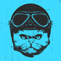 Portrait Of Persian Cat With Vintage Helmet. Royalty Free Stock Images - 92887179
