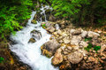 Jungle Landscape With Flowing Turquoise Water Of Georgian Cascade Waterfall At Deep Green Forest. Mountain Of Georgia Stock Images - 92891094