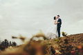 A Look From The Fallen Leaves On A Wedding Couple Kissing On The Royalty Free Stock Images - 92894829
