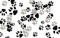 Paw Prints Stock Photos - 9295413