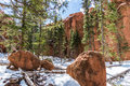 Red Rock Campground  Pike National Forest Colorado Springs Woodl Stock Photo - 92914540