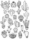 Set Of Sketch Cactus Icons. Stock Images - 92914764