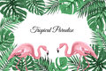 Tropical Border Frame Green Leaves Pink Flamingos Royalty Free Stock Photography - 92939067