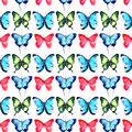Beautiful Bright Sophisticated Magnificent Wonderful Tender Gentle Spring Tropical Green Red Blue Purple Butterflies Pattern Stock Images - 92951964