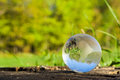The Concept Of Nature, Green Forest. Crystal Ball On A Wooden Stump With Leaves. Stock Photo - 92984870