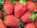 Strawberries Royalty Free Stock Photography - 933087
