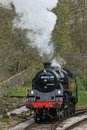 Steam Train Stock Image - 9302521