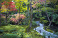 Japanese Red Maple Tree During Autumn In Garden At Enkoji Temple In Kyoto, Japan Stock Image - 93204111