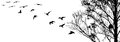 Flying Birds And Branch Silhouettes On White Background Royalty Free Stock Photos - 93217728
