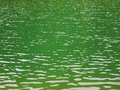 Green Lake Water Stock Images - 93227074