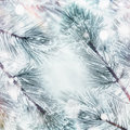 Winter Nature Background With Frame Frozen Branches Of Cedars Or Fir With Snow Royalty Free Stock Image - 93266686