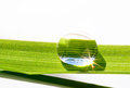 Water Drop On The Grass Blade Royalty Free Stock Photo - 93286785
