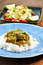 Chicken Curry Royalty Free Stock Image - 9341076