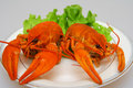 Lobsters Royalty Free Stock Image - 9347196